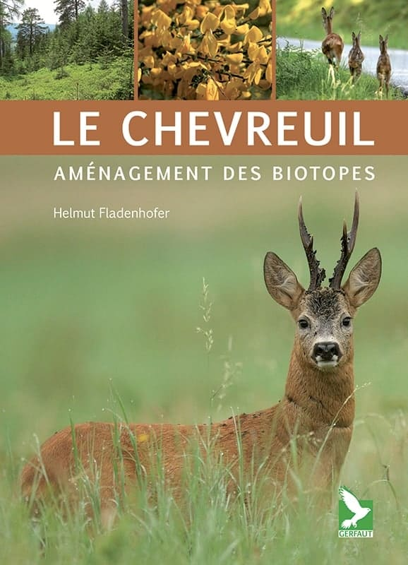 le chevreuil amenagement des biotopes