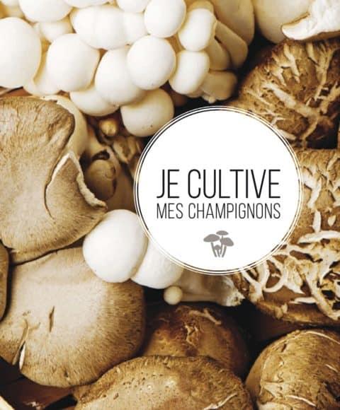 je cultive mes champignons