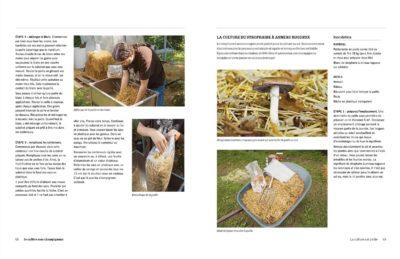 je cultive mes champignons dp3 1