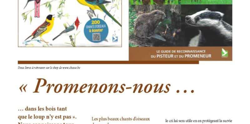 chasse nature article editions du gerfaut 1